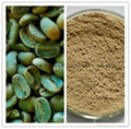 Natural Green coffee bean extract 50% chlorogenic acids 1