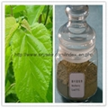 100% Natural Mulberry Leaf Extract 1%