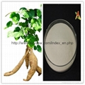 pure natural Kudzu Root Extract Pueraria