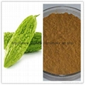 100% Natural Bitter Melon Extract 10%