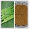 natural enhance immunity 10:1 Okra
