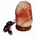 Himalayan Rock USB Natural Salt Lamps