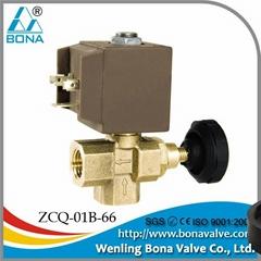 """1/4"""" Brass Vertical Steam Iron Boiler 42V 110V 220V Magnetic Va  e"""