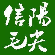 信阳红谷雨茶