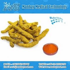 Organic Natural Turmeric Root Extract
