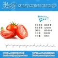 Tomato Lycopene.Tomato Extract
