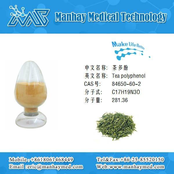 100% Natural Green Tea Extract Powder 40%-98% Total Tea Polyphenols 1