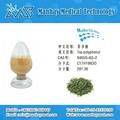 100% Natural Green Tea Extract Powder