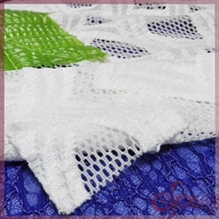 White braided lace fabric