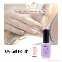 Colors Soak Off Gel Polish, Nail Art in Gel Nail Polish, LED Gel Polish