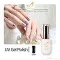 private lable makeup nail polish&UV