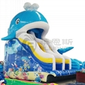 The little whale water slides