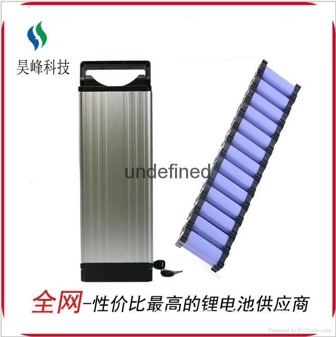 厂家直销电动车锂电池后衣架款48v8800mAh批发 4