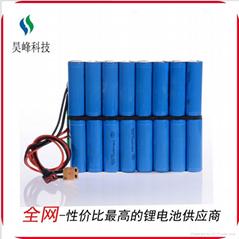 厂家供应独轮车锂电池60v2200mAh 续航远不断电
