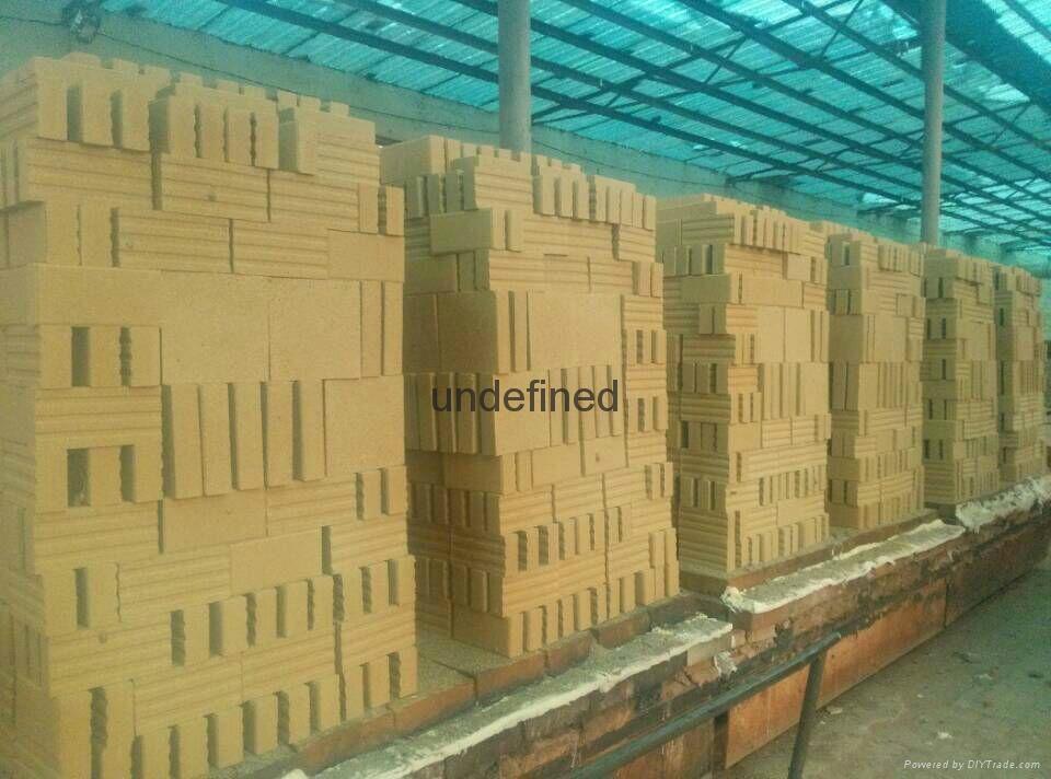 景觀磚園林綠化景觀磚 5