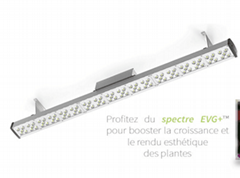 New generation 150w led grow light  for importers