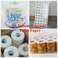 toilet paper in small ro
