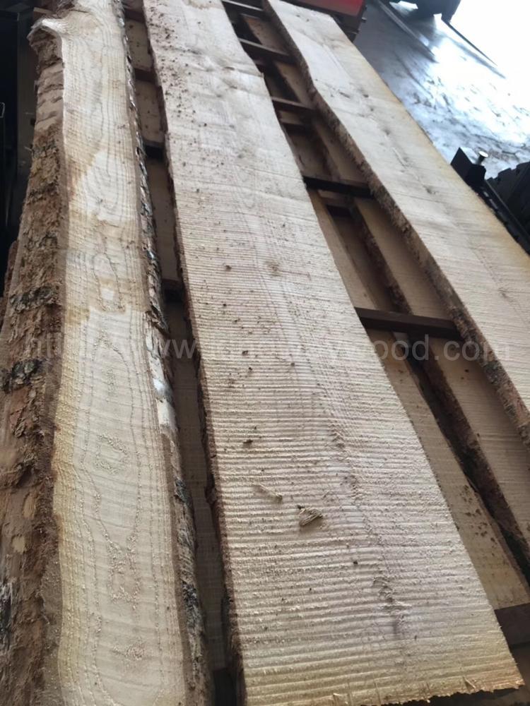 歐洲白蠟木毛邊板材 長料 1
