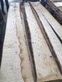 欧洲白蜡木毛边板材 长料 2