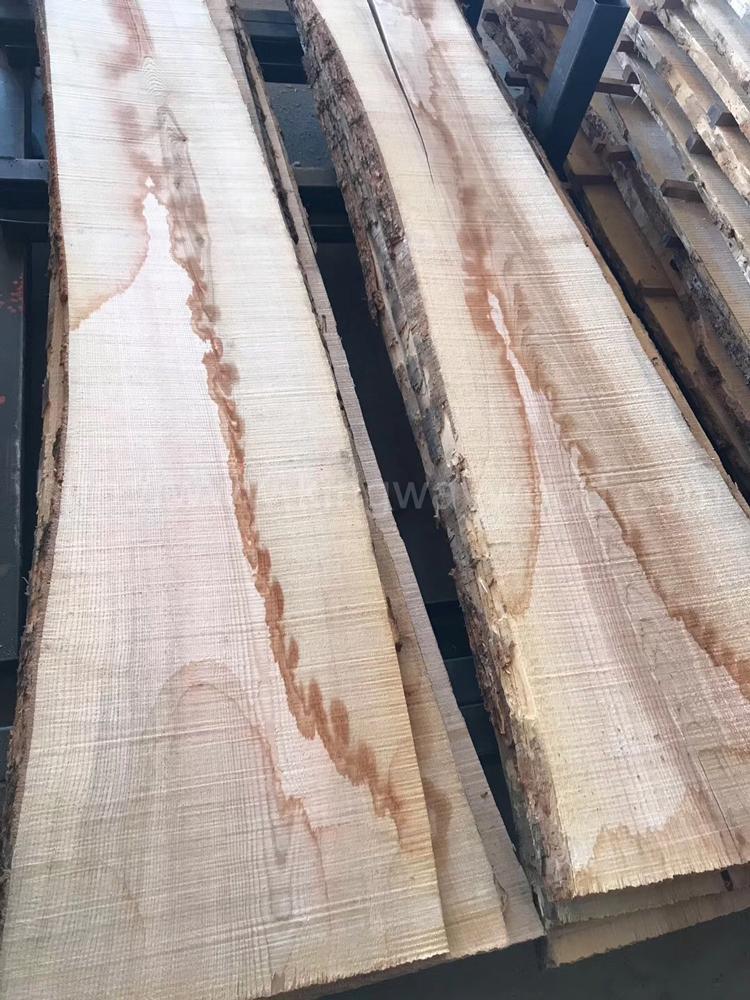 歐洲白蠟木毛邊板材 長料 3