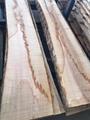 欧洲白蜡木毛边板材 长料 3