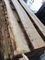 欧洲白蜡木毛边板材 长料 4