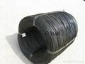 iron wire 2