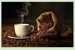 进口巴西利亚咖啡