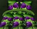 Beautiful quilted bed sheet flower 3D Bedding Set 3