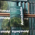 泰国Annabella安娜海藻