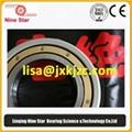 6222M/C3VL0241 SKF NTN NKE FAG Bearings