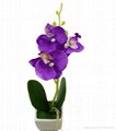 wholesale artificial orchid thailand