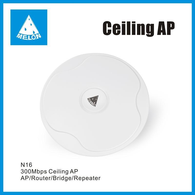 Ceiling AP  1
