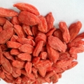 Goji Dried Berry