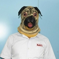 Animal pug dog latex face mask for halloween party costumes 4