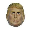 2015 New US presenter Donald Trump mask