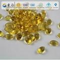 Health Care Supplement seal oil Gelatin