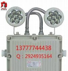 廠家直供德力西LED防爆雙頭應急燈BAJ51-2*3W