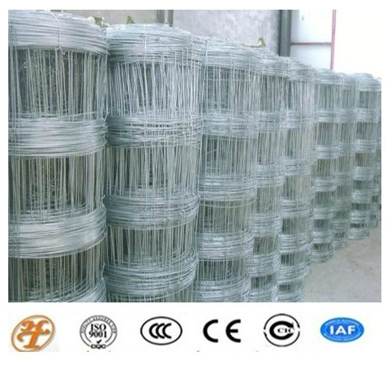 High Quality Grassland Net on Sale 2