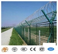 High Quality and Low Price Ga  anized Razor Barbed Wire Fence
