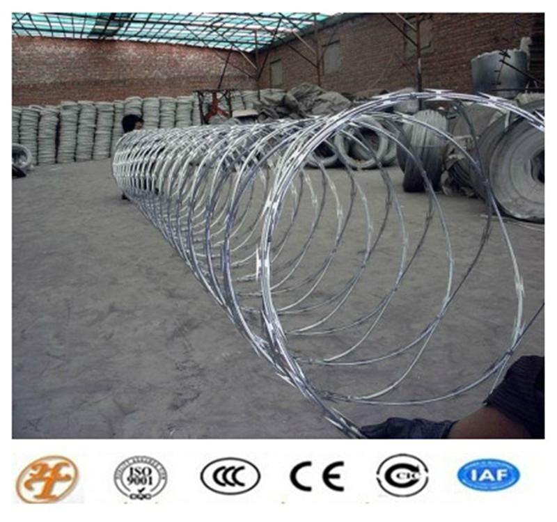 High Quality and Low Price Ga  anized Razor Barbed Wire Fence 5