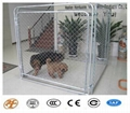 Beautifui High Quality Dog Cages Hot
