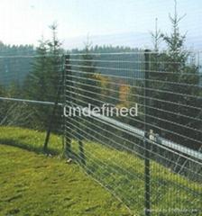 小區鋅鋼草坪護欄網