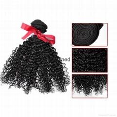 Evet Kinky Curly Brazilian Virgin Hair Weave 100% Human Hair