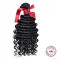 EVET Brazilian Curly Hair Weave 2