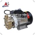 Aulank高温热导油泵ALK