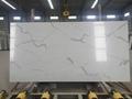 Carrara White Marble Like Quartz Countertops 1