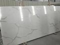Carrara White Marble Like Quartz Countertops 3