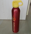 mini car fire extinguisher
