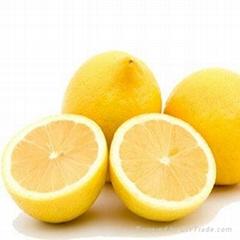 High-quality Chinese Eureka fresh lemon